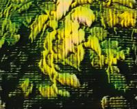 Thorsten Hallscheidt, Iteration 1 (Wind), Videoinstallation, 2000